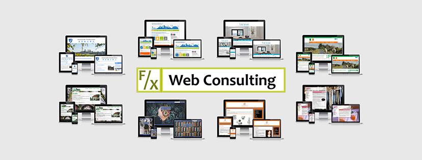 F/X Web Consulting: Logo mit Auswahl von Kundenreferenzen